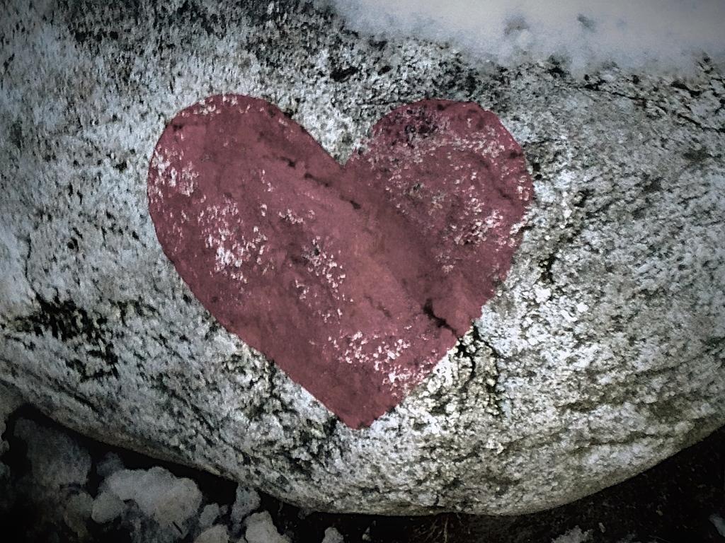 heart bw